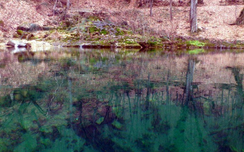 Юсуповское озеро для разведение форели