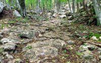 Древняя дорога Крыма