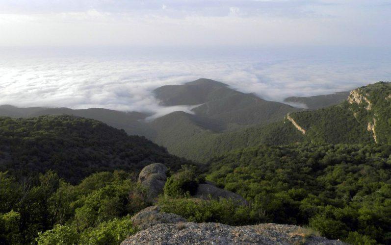 Вид с обрывов Нижней Джурлы на долину реки Алака