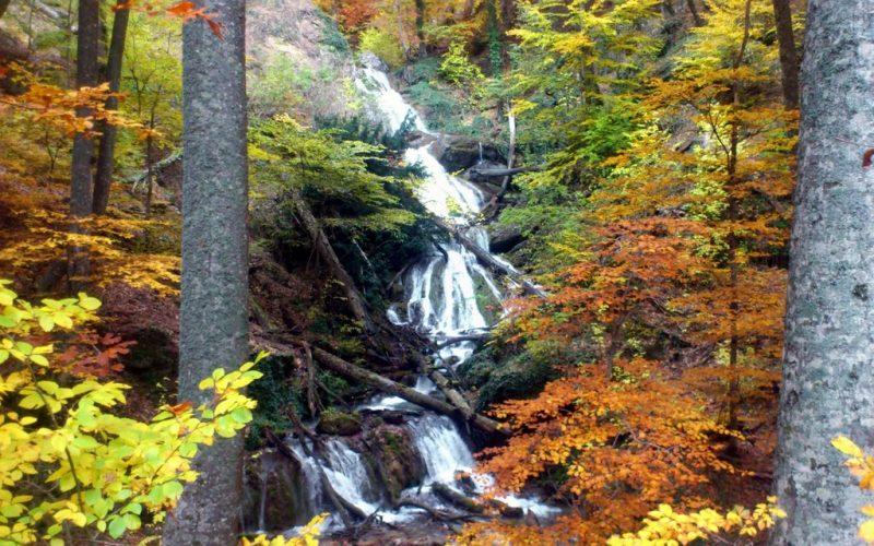Многокаскадные водопады