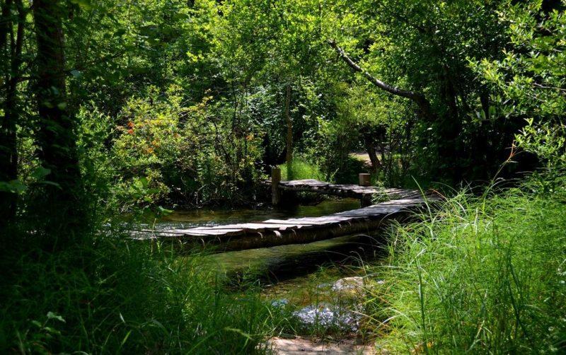 Мостики над рекой