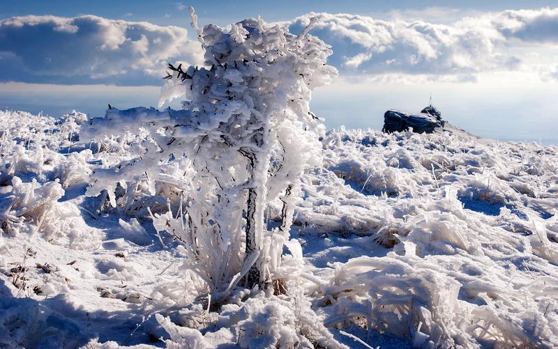 Ледяная яйла